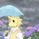 傘と紫陽花と高校生。